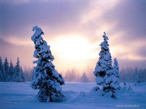 foto_inverno_21